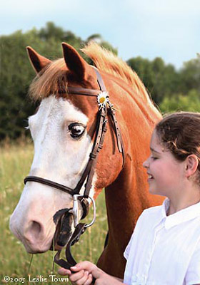 Welsh Pony and Girl
